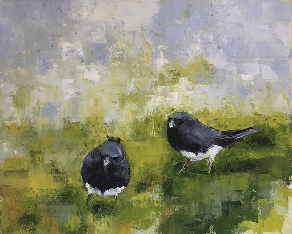 Two Juncos