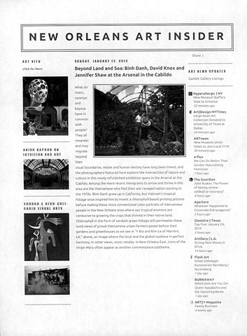 New Orleans Art Insider, review by Eric Bookhardt