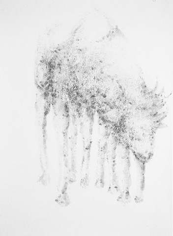 Untitled (Bison Antiquus)