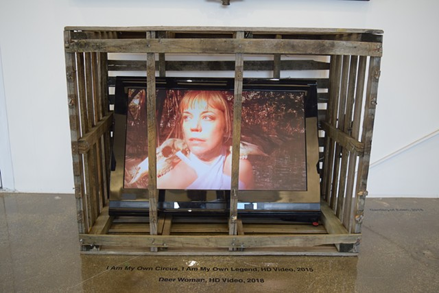 Video Installation within a lobster trap