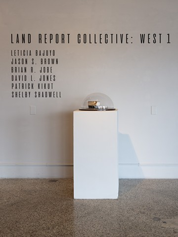 Land Report Collective