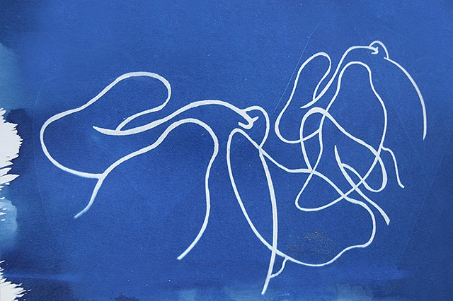 Cyanotype Drawing #4