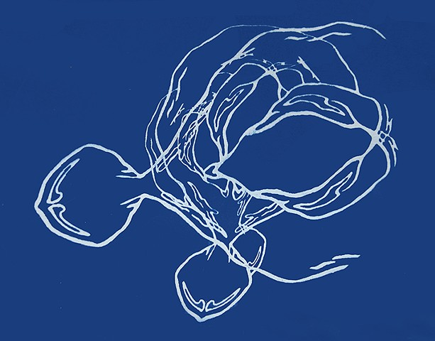 Cyanotype Drawing Untitled #1