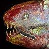 Raku Fish 2