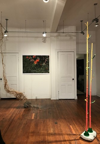 "Install shot of ""Youthful Discretion"" at FloodPlain"
