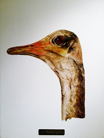 ostrich painting by Karlo Andrei Ibarra