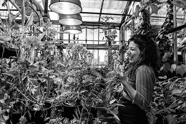 UI Greenhouse provides students and community members a place for plant interests