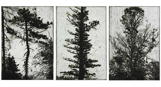 Triptych  2006