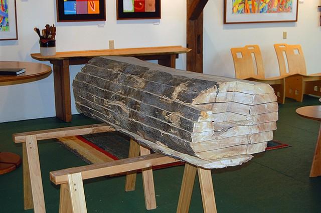 Flitch sawn log from Old Main Elm.  PSU campus.