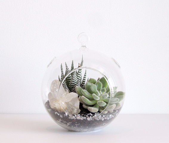 By The Archive Gallery  Small Sphere Terrarium