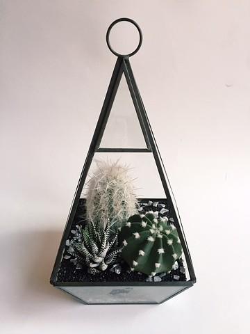 Black sand geometric terrarium $54