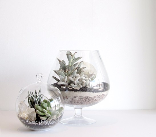 """By The Archive Gallery  Small Sphere Terrarium and """"Wine Glass"""" Terrarium"""