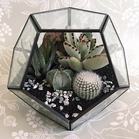 Black Sand Geometric Terrarium- Currently Out of Stock