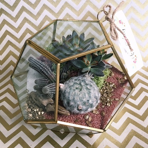 Geometric Terrarium- Currently Out of Stock