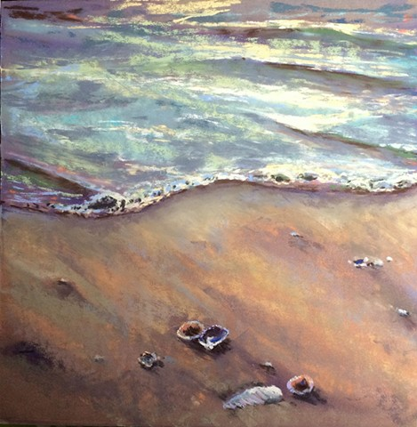 On a sandy beach at the ocean, outgoing tide strands a group of shells in the sand, iridescent in the sunset