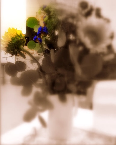 Altered digital photo, bouquet, black & white, flowers and vase