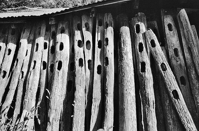 black and white, photo, fence posts, farm,