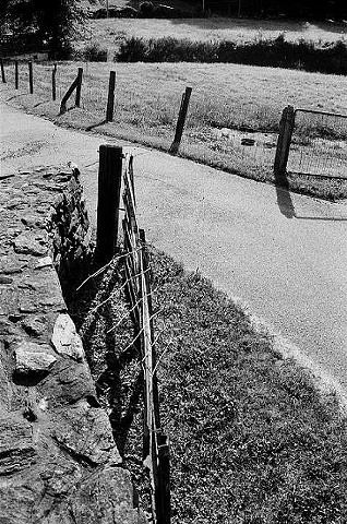black and white, photo, farm, rockwall
