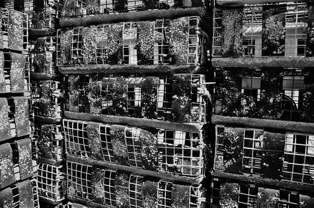 Black and White photo, Non-digital, Lobster Crates