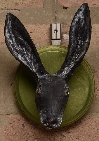 Black Hare portrait