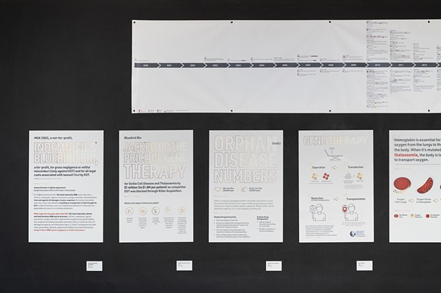 Timeline, Orphan Disease, and Gene Therapy (left half): Installation at The International Museum of Surgical Science (4280)