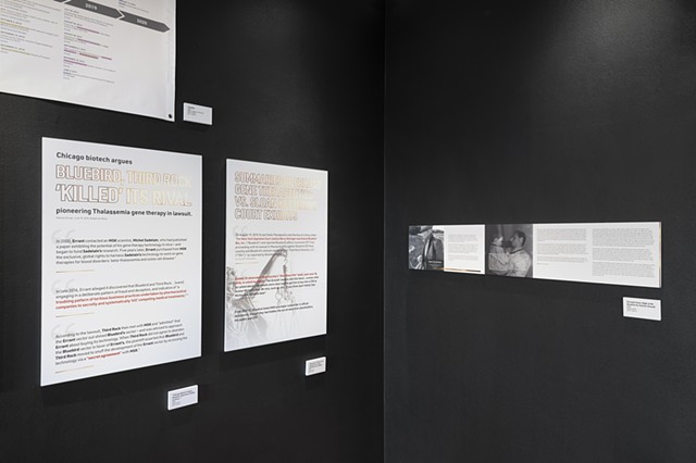 Court Summaries and Excerpts from Flight of the Rondone: Installation at The International Museum of Surgical Science (4282)