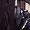 Gate (Detail)