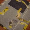 Wine Stained Quilt/ Back