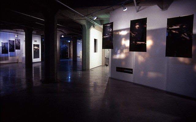 Cloud Walker. Entrance view. 2008. Zhou B Center. 18 - 3.5ft x 6ft. Duraclear transparencies.