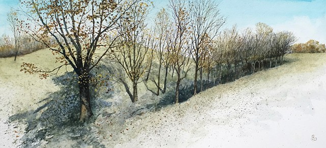 Original watercolor on rag board of a tree line in late fall by Illinois Midwestern artist M Royal Schroll