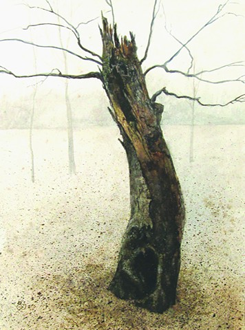 Original watercolor on illustration board of a young dotarded tree at the Emiquon National Wildlife Refuge Mark Royal Schroll Midwest regional landscape artist