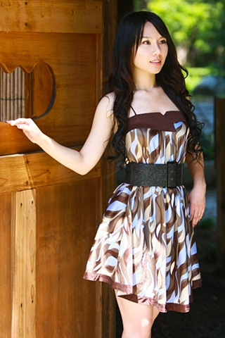 The Brown Dress 3
