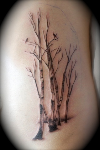 Birch with Birds