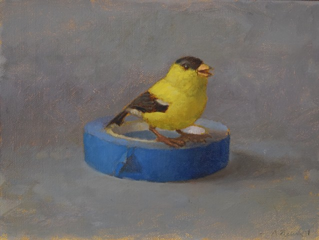 Goldfinch/tape 2
