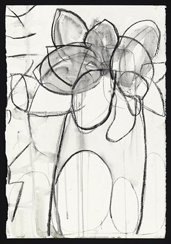 "For the Most Part, Charcoals and Ink, 15"" x 22"" plants, Stephanie Rose Bird, abstraction"