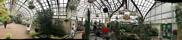 Michael Thompson Chicago artist,installation, Lincoln Park Conservatory, Spring Flower Show Lincoln Park Conservatory