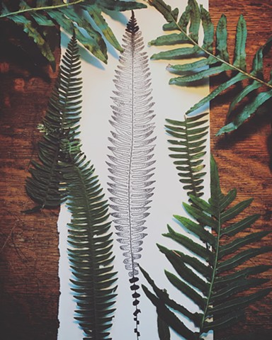 gorgeous fern piece/large scale