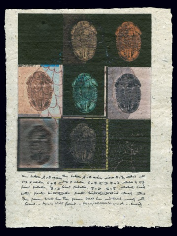 Document 8 (9 Fossils)