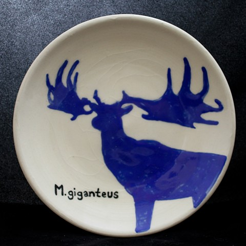 M. Gigantus: Irish Elk