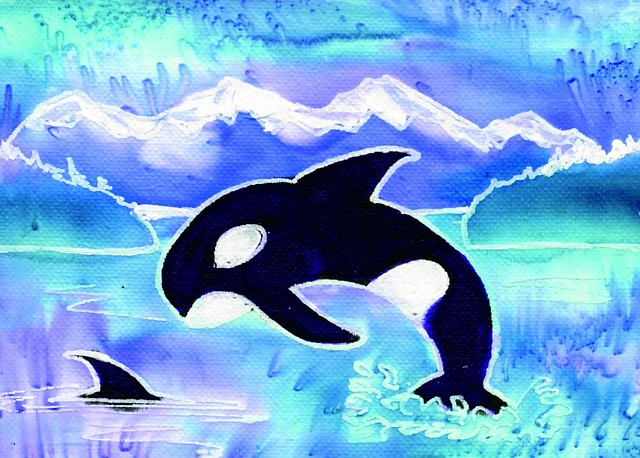 Orca Whales & Olympic Mountains