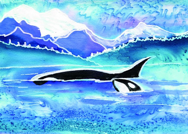 Orca Whales North Cascades