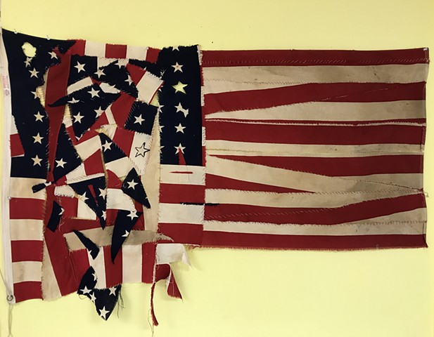 """Divided States of America"" Assemblage"