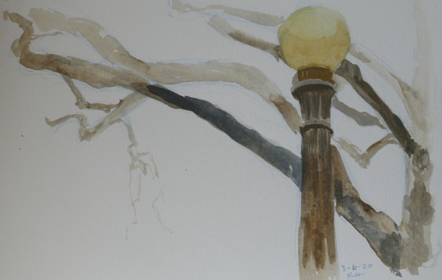 March 6/Tree with Lamppost