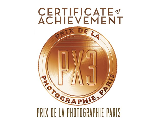 Paris, France 2014, 3rd Place Fine Art Photo