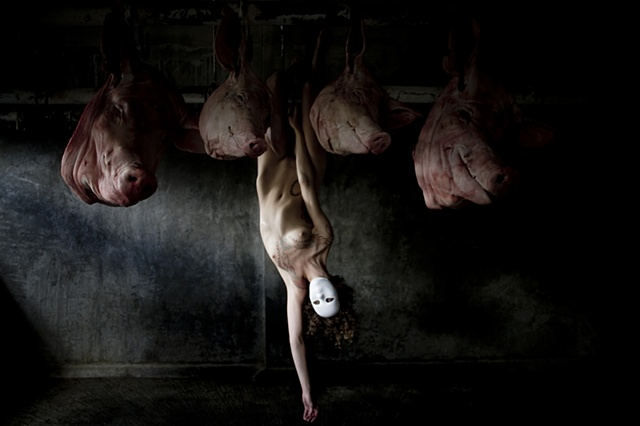 slaughter house consumption alexandra gibson