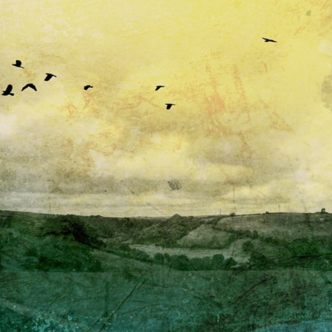 Digitally aged and altered photograph of a Texas landscape with Blackbirds flying overhead