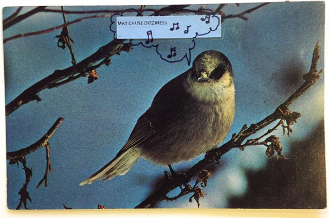 Recycled postcard with image of an American Songbird with added medication sticker for Translation of Bird Song