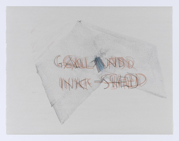 Gall and Ink-Shed 4