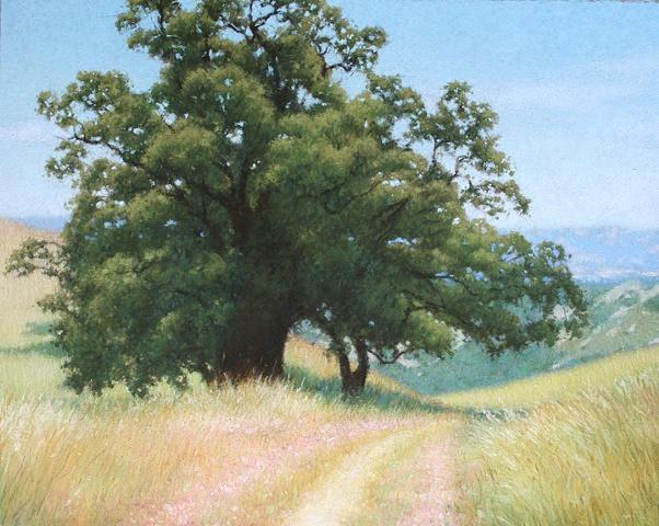 Diablo Oak