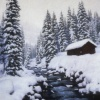 Winter at the Hotsprings